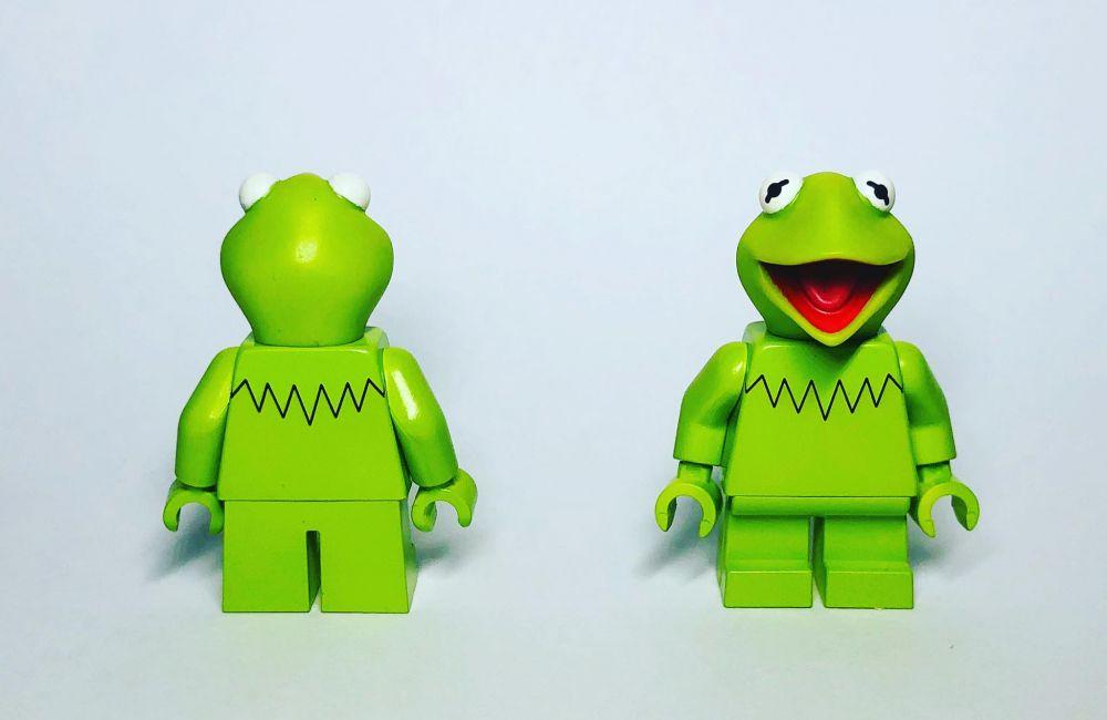 Tea-Drinking Frog